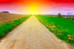 Dirt Road at Sunset Royalty Free Stock Photography