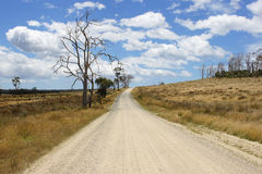 Dirt road, Tasmania, Australia Royalty Free Stock Photos