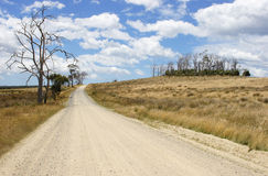 Dirt road, Tasmania, Australia Royalty Free Stock Image