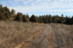 Dirt road tire tracks through dry meadow Stock Image