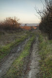 Dirt road with tire tracks leading to village Royalty Free Stock Photography
