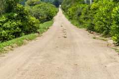 Dirt road to a Farm Stock Image