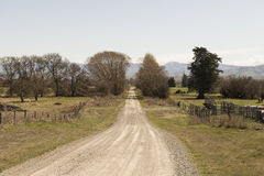 Dirt road to a farm in New Zealand Royalty Free Stock Photo