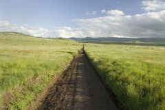 Dirt road to infinity through green grasslands of Lewa Wildlife Conservancy in North Kenya, Africa Royalty Free Stock Images