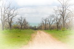 Dirt road to the sea. Through the spring Park Royalty Free Stock Image