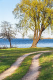 Dirt road and tree on riverbank summer day Stock Images