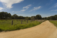 Dirt road under blue sky Royalty Free Stock Photography
