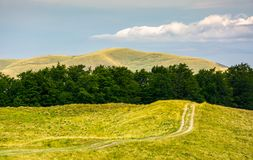 Dirt road uphill in to the forest. Dirt road uphill in to the beech forest. beautiful mountainous landscape in summer. location Svydovets mountain ridge Royalty Free Stock Photography