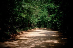 Dirt Road. A view down a shaded road in Arkansas Royalty Free Stock Images