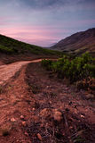 Dirt road in Western Cape valley Royalty Free Stock Image