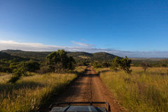 Dirt Road Wildlife Safari Vehicle. Tourists view perspective from a game ranger 4x4 open seat vehicle on a dirt road in the African wildlife park reserve. The Stock Photo