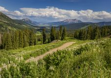 Dirt road winding through the Colorado Mountains in the Summerti Royalty Free Stock Images
