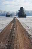 Dirt road in winter Royalty Free Stock Photo