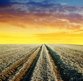 Dirt road in winter field Stock Photo