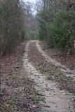 Dirt Road. This is in Wood Country, Winnsboro Texas. Taken January 15 2017 Stock Image