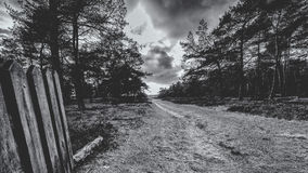 Dirt road with a wooden gate in a rural landscape. Royalty Free Stock Image