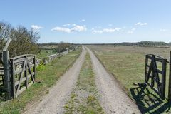 Dirt road with wooden gates by a great plain grassland at the swedish island Oland stock image