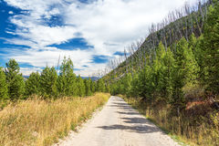 Dirt Road in Yellowstone National Park Stock Images