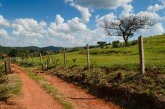 Dirt rural road Stock Photo