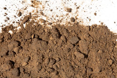 Dirt and Soil on white background. Close-up Dirt and Soil on white background Stock Images