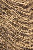 Dirt Swirls Stock Image