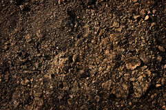 Free Dirt Texture Stock Images - 12611254