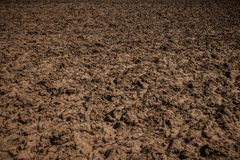 Dirt texture. Country dirt road texture. Unworked land, field. Country dirt road texture. Land without crop. Farm Field Texture Dirt Rocks Background Brown Dead stock photography