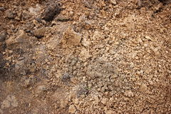 Dirt texture. Fresh dirt background texture taken from a construction site royalty free stock photography