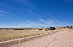 Dirt track in the Kalahari desert Royalty Free Stock Photography