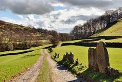 Dirt track through lush farmland Stock Image