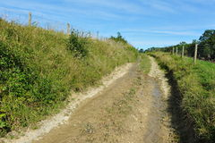Dirt Track. Narrow Dirt Track through Farmland Royalty Free Stock Photo