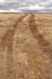 Dirt track in a paddock Stock Image