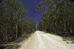 Dirt track road Royalty Free Stock Photo