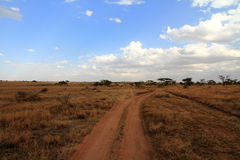 Dirt Track Road in Serengeti. A dirt road through the Serengeti stock image