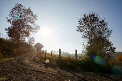 Dirt track winding, contre-jour midday with blue sky royalty free stock photos