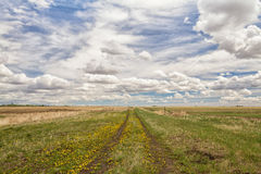 Dirt Tracks in Prairie Field Stock Photography