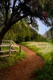 Dirt trail through countryside. Picturesque dirt trail through lush countryside royalty free stock images