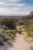 Dirt Trail Winds Through Desert Landscape. In southern California Royalty Free Stock Photography