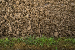 Dirt Royalty Free Stock Images