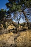 Walking Trail in California Canyons Royalty Free Stock Images
