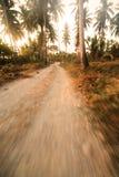 Dirtroad tropicale Fotografia Stock