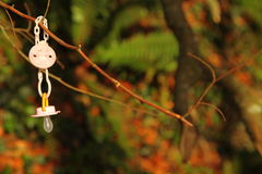 Dirty baby pacifier hanging outside in branch Stock Image