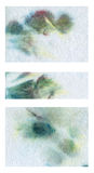 Dirty background. Grunge background on white tissue Royalty Free Stock Photography