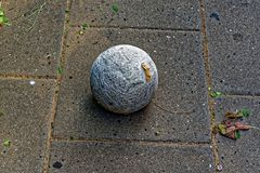 Dirty ball of yarn on the street. Shot Royalty Free Stock Photography