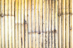 Dirty bamboo wall Stock Image