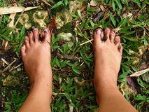 Dirty Bare Feet in the Grass. Picture of the dirty feet of mud, bare in the slush grass after rain Stock Photo