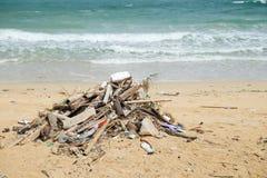 Dirty beach Royalty Free Stock Image