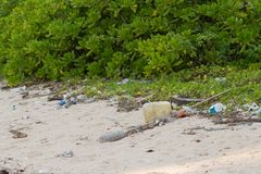 Dirty beach on the island of Little Andaman in the. Indian Ocean littered with plastic. Pollution of coastal ecosystems, natural plastic and beaches Stock Photography