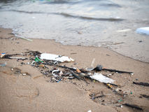 Dirty beach,sea pollution. Stock Images