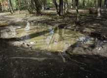 Dirty big puddle beside the road royalty free stock photos